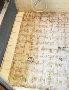 浴室床張替え工事 施工前